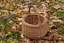 Soñando con la cesta