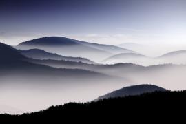 Soñando con la niebla