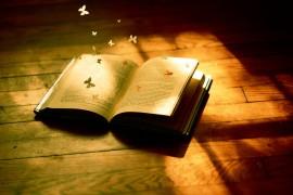 Soñando con leer